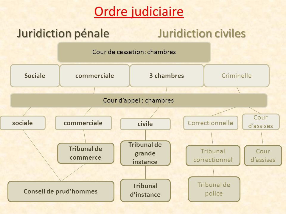 LOrganisation De La Justice En France  Ppt Video Online Tlcharger