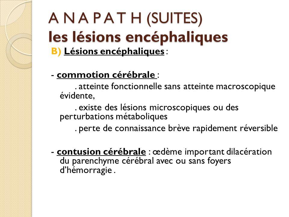 A N A P A T H (SUITES) les lésions encéphaliques