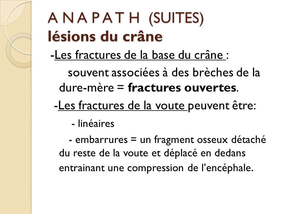 A N A P A T H (SUITES) lésions du crâne