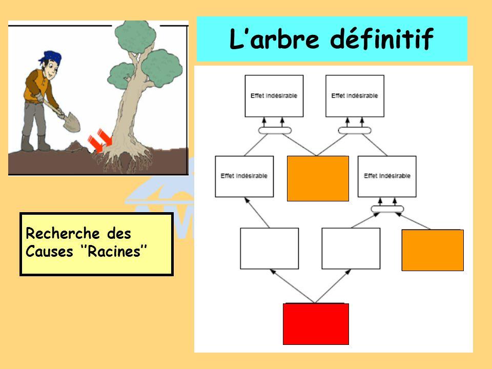 L'arbre définitif Recherche des Causes ''Racines''