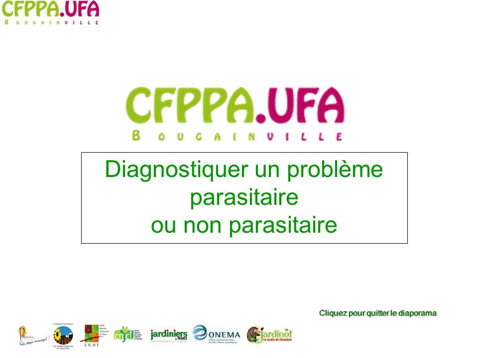 Diagnostiquer un problème parasitaire ou non parasitaire