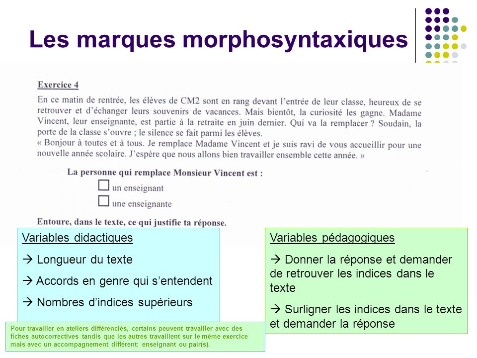Les marques morphosyntaxiques