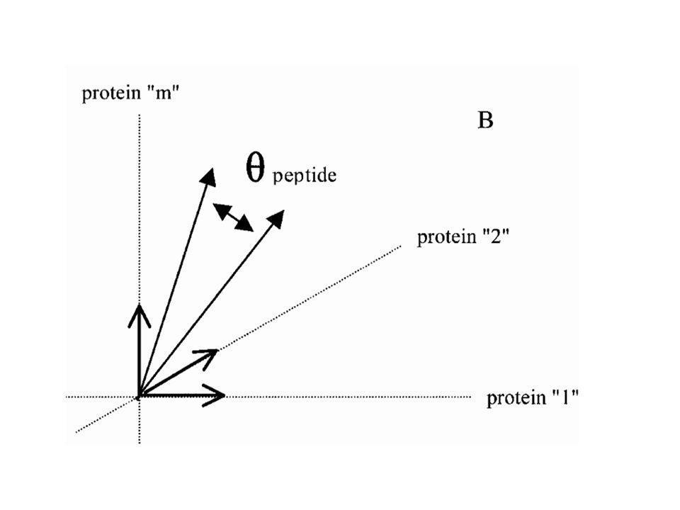 A l'inverse de la diapo précédente, nous sommes ici dans « l'espace des protéines ». Un tétrapeptide donné (par exemple KFGT) sera observé 2 fois dans la protéine 1, 3 fois dans la protéine 2, etc...