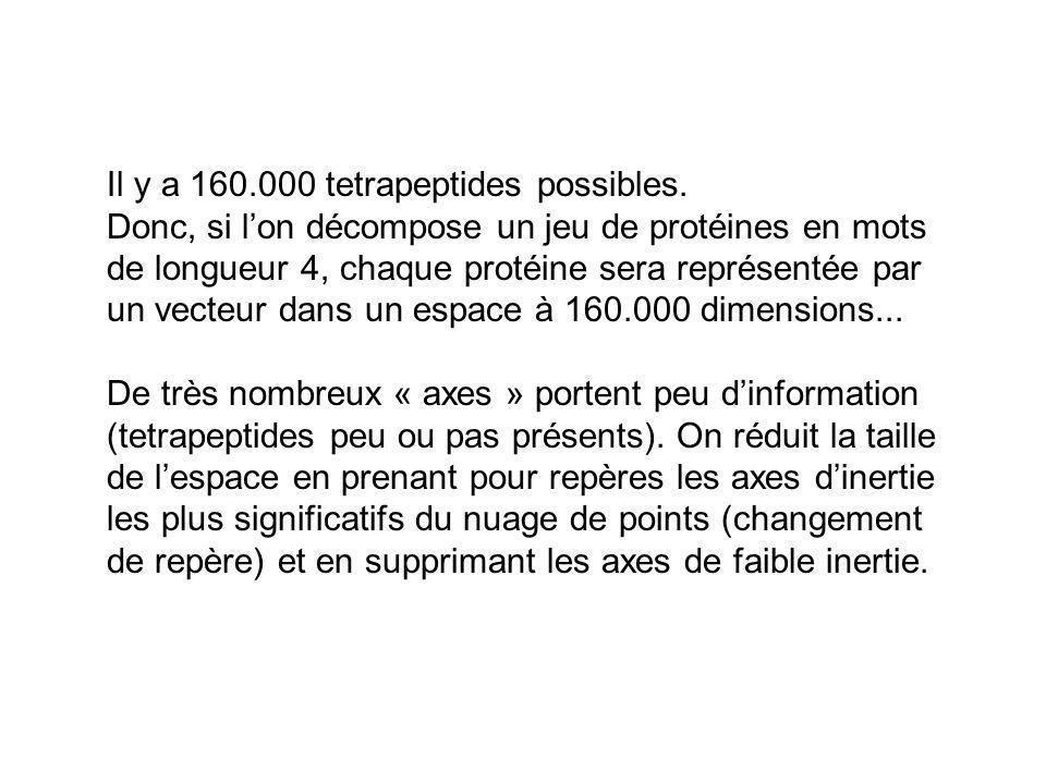 Il y a 160.000 tetrapeptides possibles.
