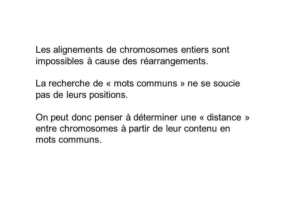 Les alignements de chromosomes entiers sont
