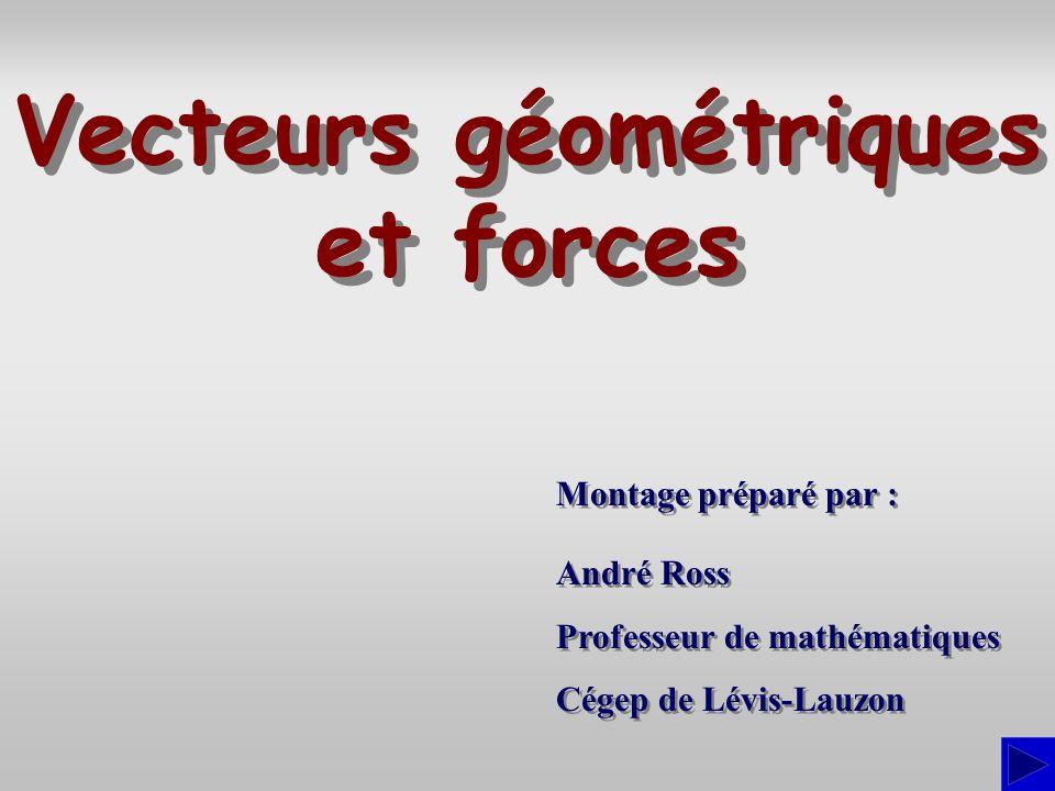 Vecteurs géométriques et forces