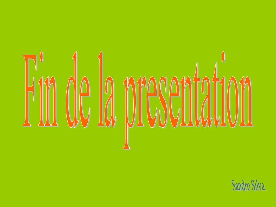 Fin de la presentation Sandro Silva
