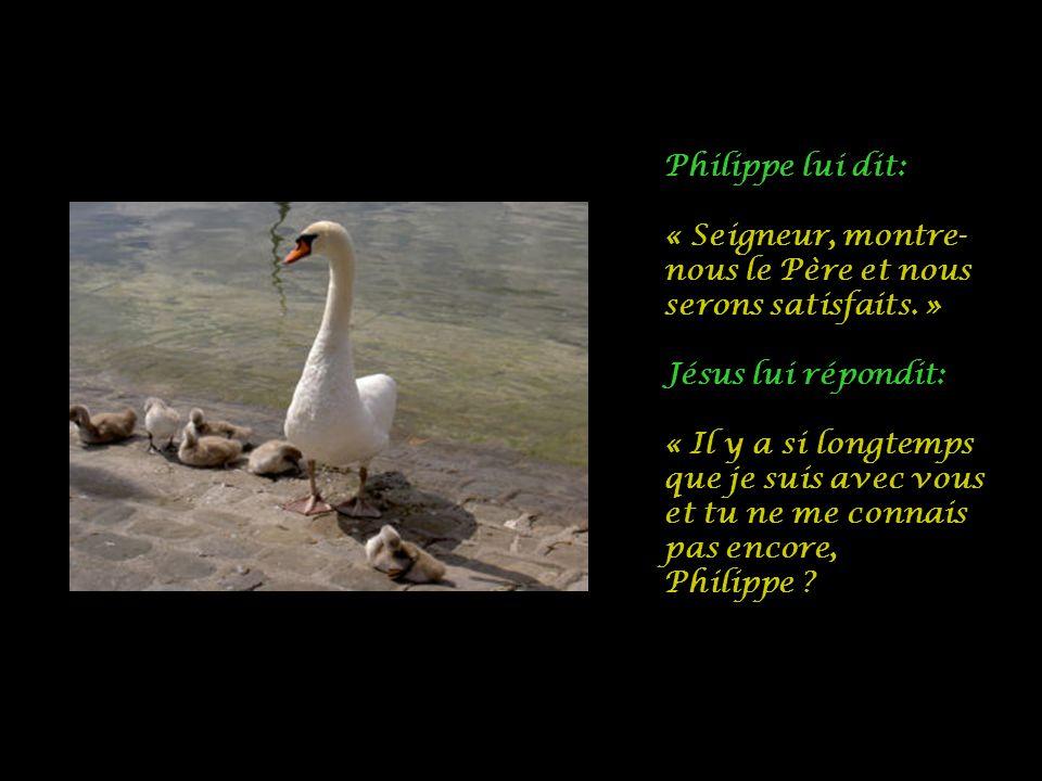 Philippe lui dit: « Seigneur, montre-nous le Père et nous serons satisfaits. » Jésus lui répondit: