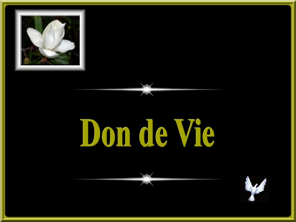 Don de Vie