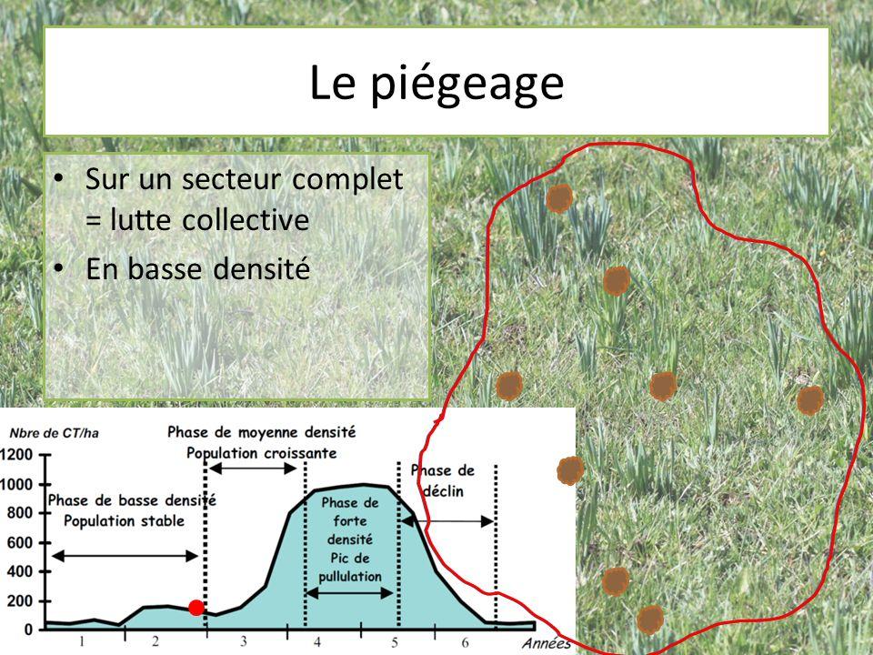 Le piégeage Sur un secteur complet = lutte collective En basse densité