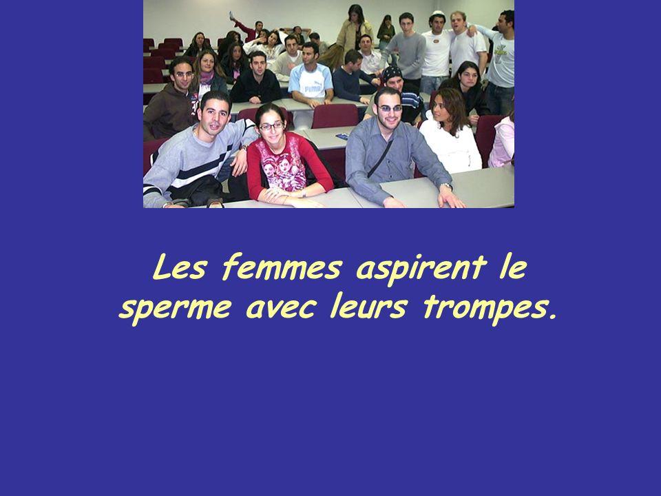 Les femmes aspirent le sperme avec leurs trompes.