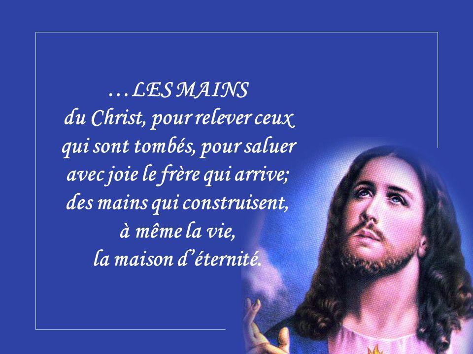 …LES MAINS du Christ, pour relever ceux qui sont tombés, pour saluer avec joie le frère qui arrive; des mains qui construisent, à même la vie, la maison d'éternité.