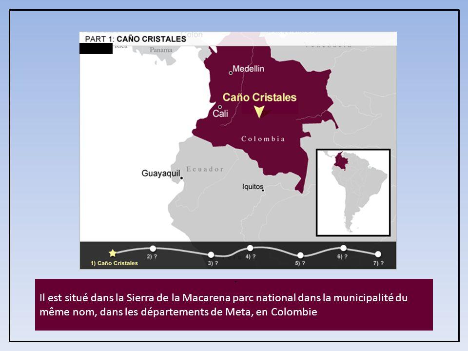 . Il est situé dans la Sierra de la Macarena parc national dans la municipalité du même nom, dans les départements de Meta, en Colombie.