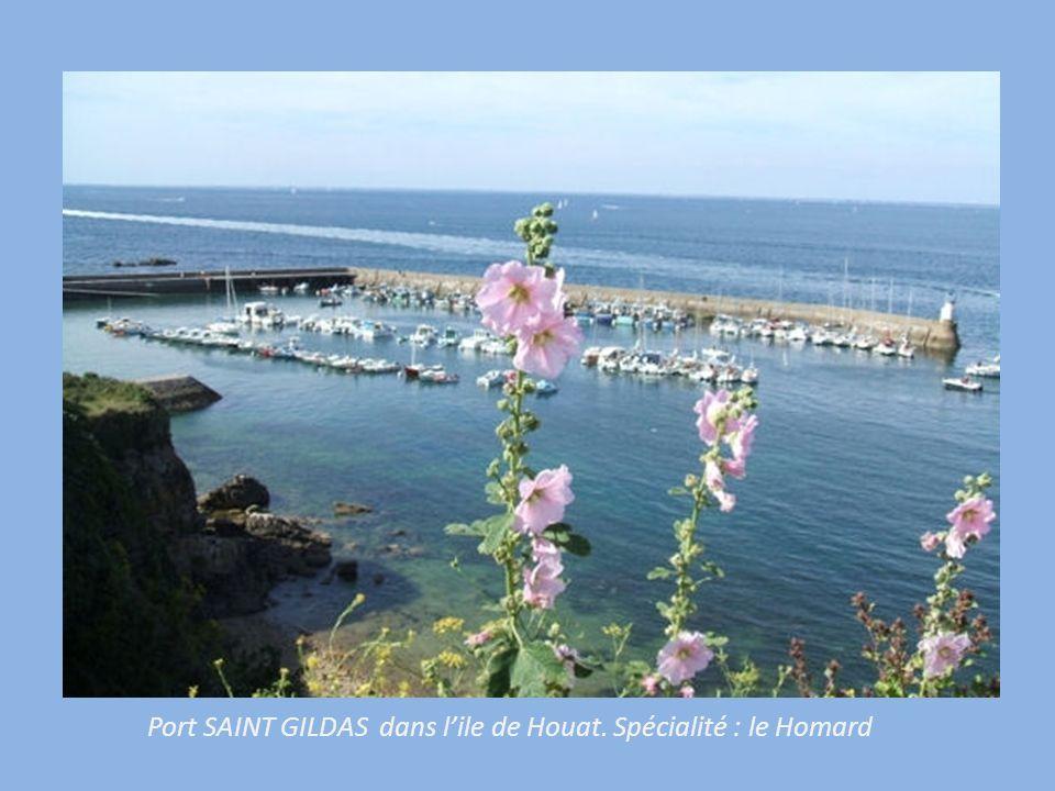 Port SAINT GILDAS dans l'ile de Houat. Spécialité : le Homard
