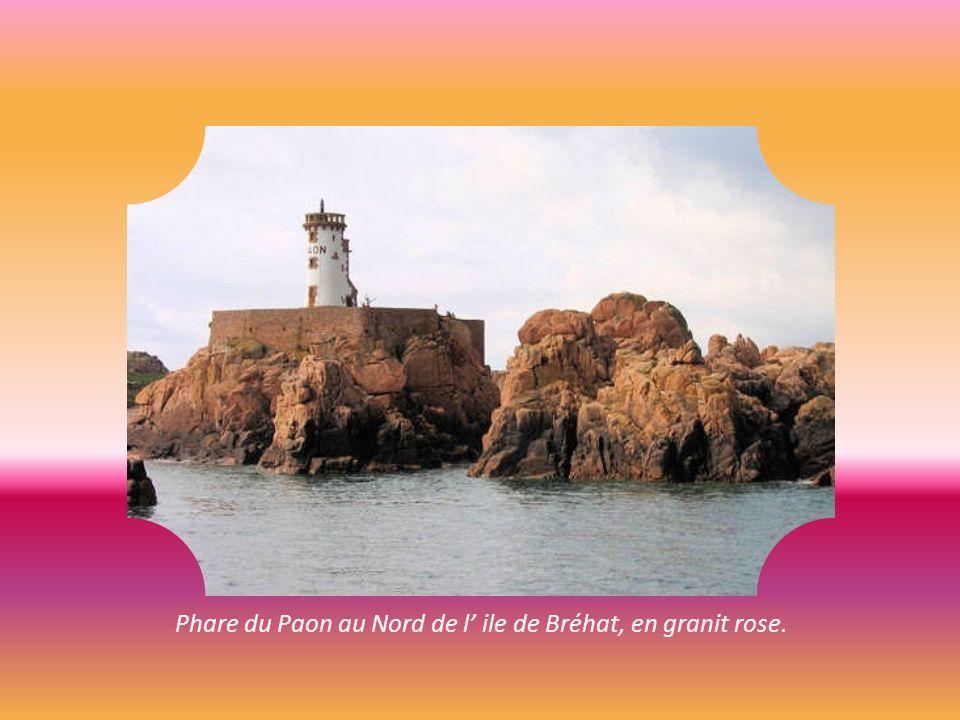 Phare du Paon au Nord de l' ile de Bréhat, en granit rose.
