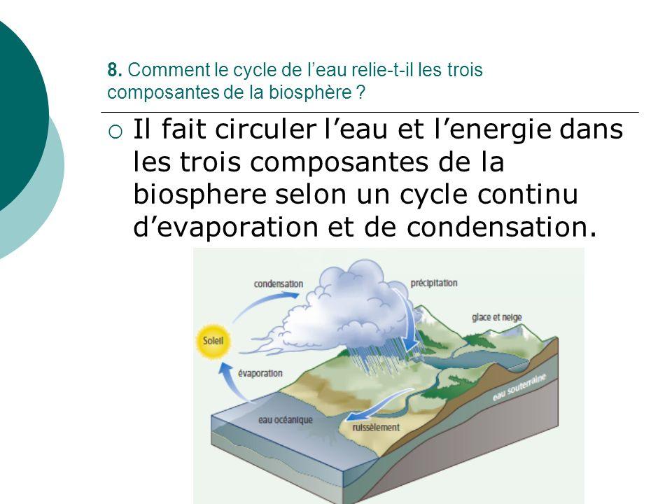 8. Comment le cycle de l'eau relie-t-il les trois composantes de la biosphère