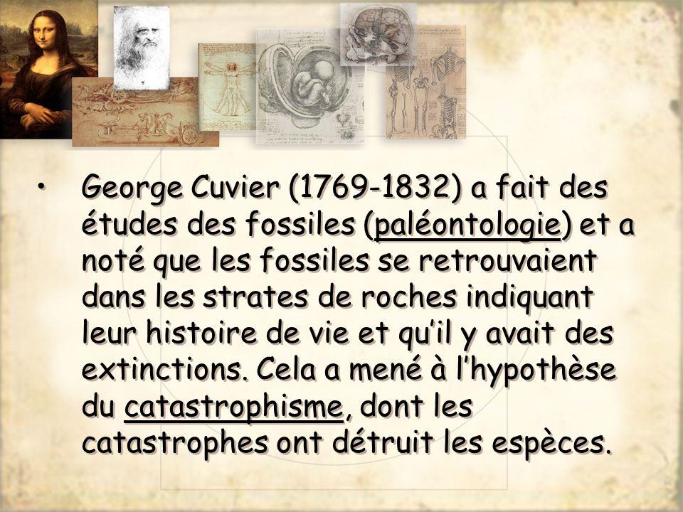 George Cuvier (1769-1832) a fait des études des fossiles (paléontologie) et a noté que les fossiles se retrouvaient dans les strates de roches indiquant leur histoire de vie et qu'il y avait des extinctions.