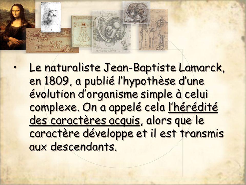 Le naturaliste Jean-Baptiste Lamarck, en 1809, a publié l'hypothèse d'une évolution d'organisme simple à celui complexe.