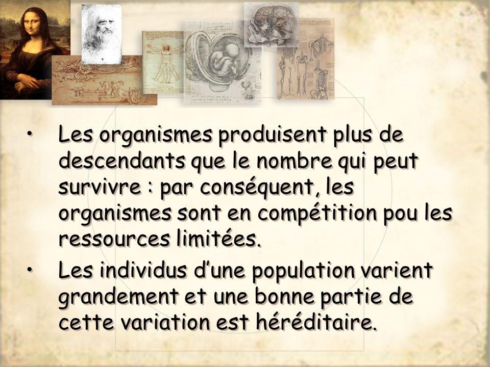 Les organismes produisent plus de descendants que le nombre qui peut survivre : par conséquent, les organismes sont en compétition pou les ressources limitées.