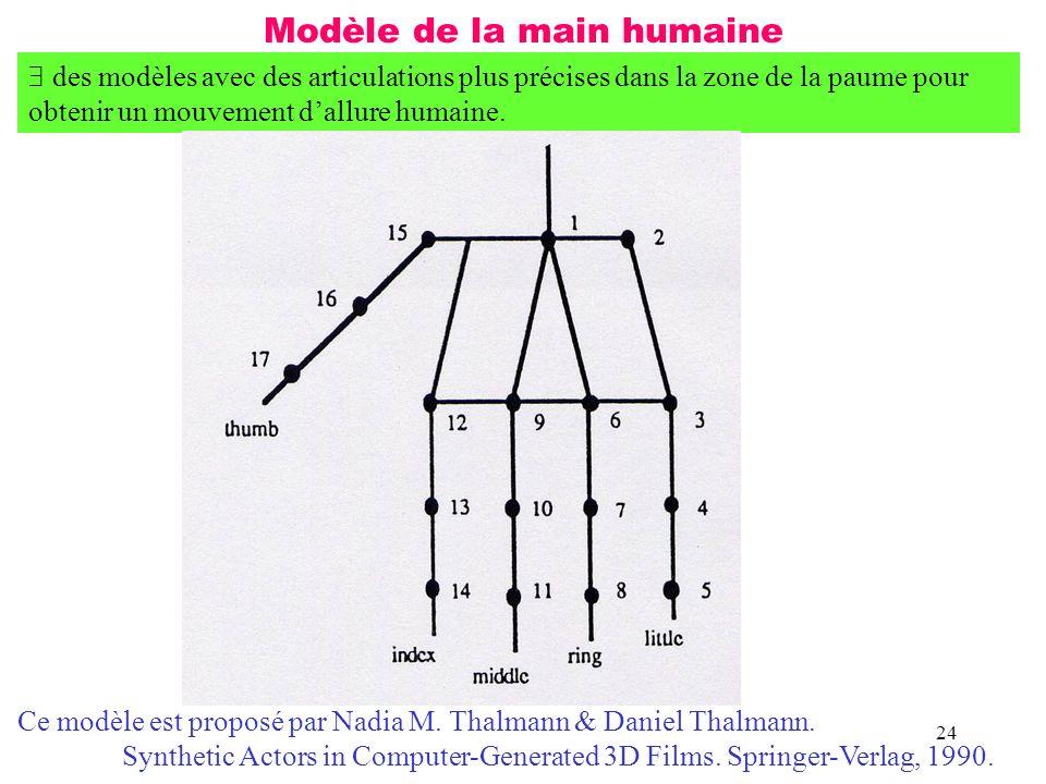 Modèle de la main humaine