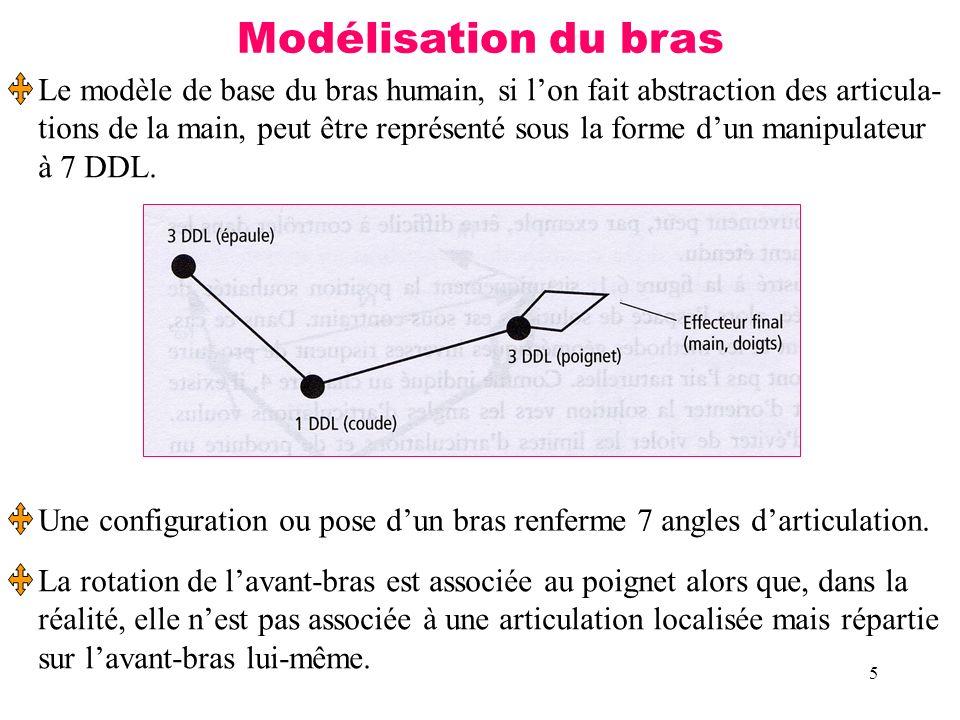 Modélisation du bras Le modèle de base du bras humain, si l'on fait abstraction des articula-