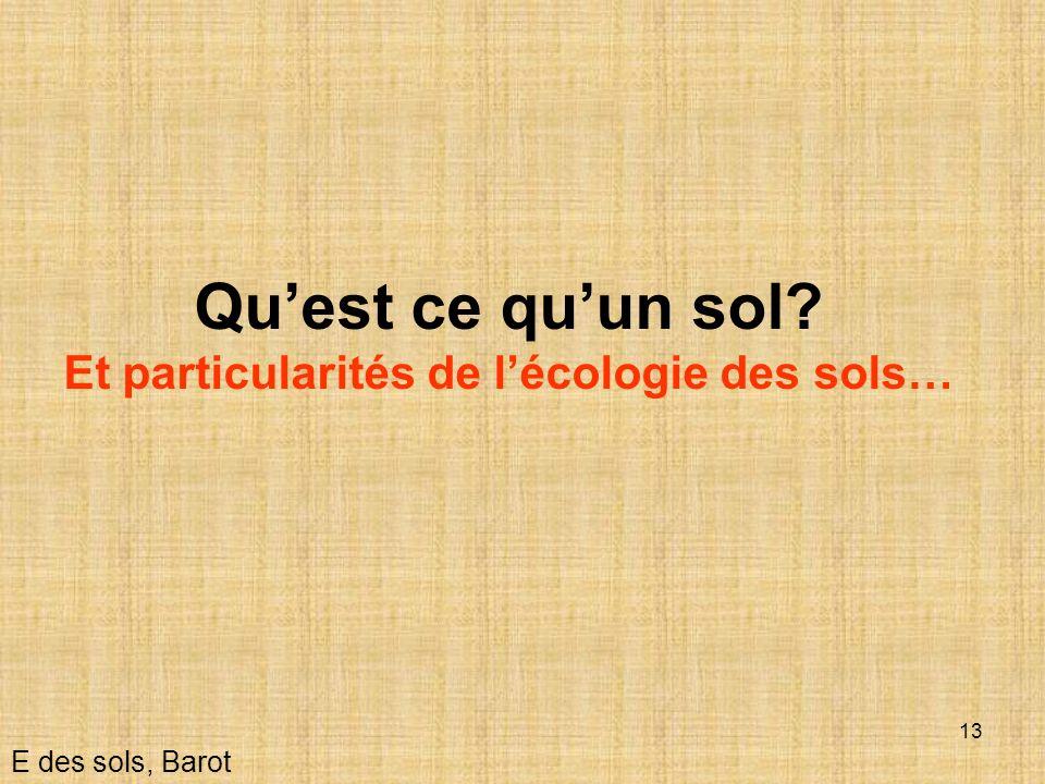 Et particularités de l'écologie des sols…