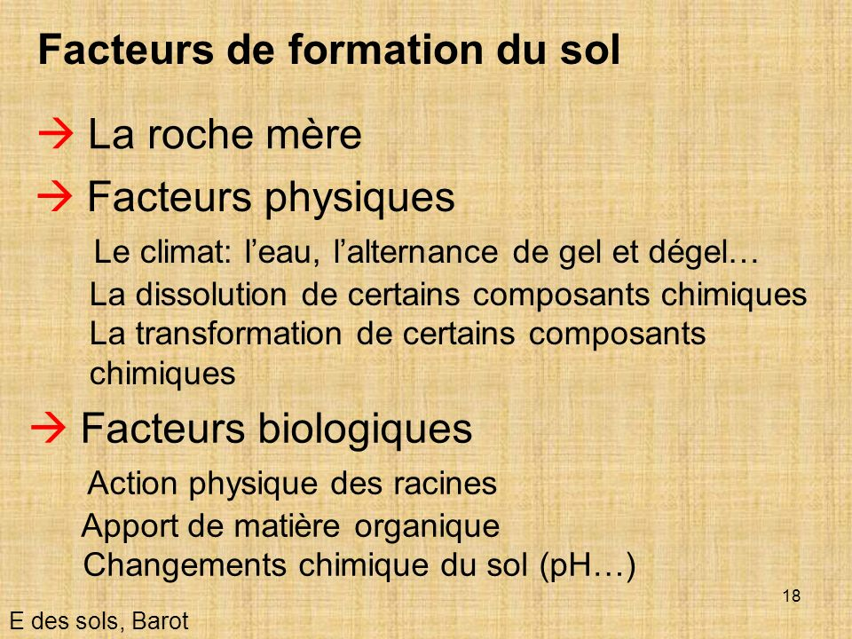 Facteurs de formation du sol