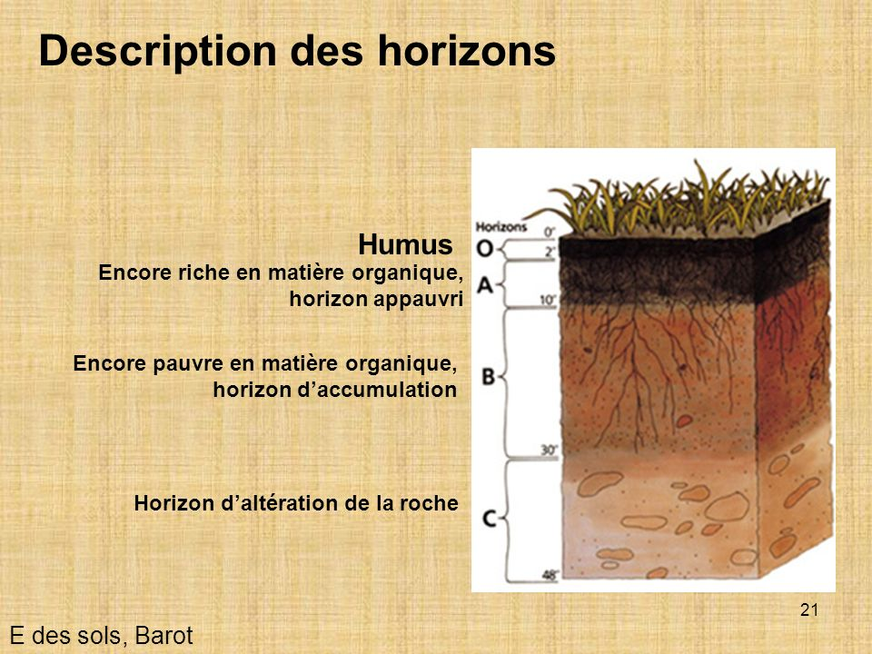 Description des horizons
