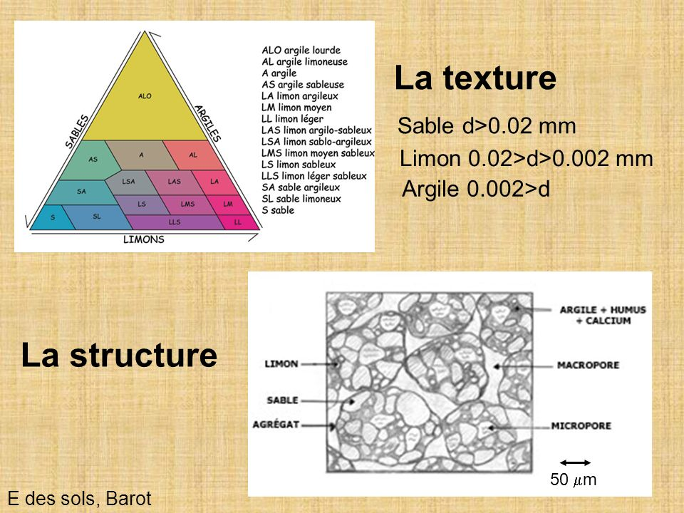 La texture La structure Sable d>0.02 mm Limon 0.02>d>0.002 mm
