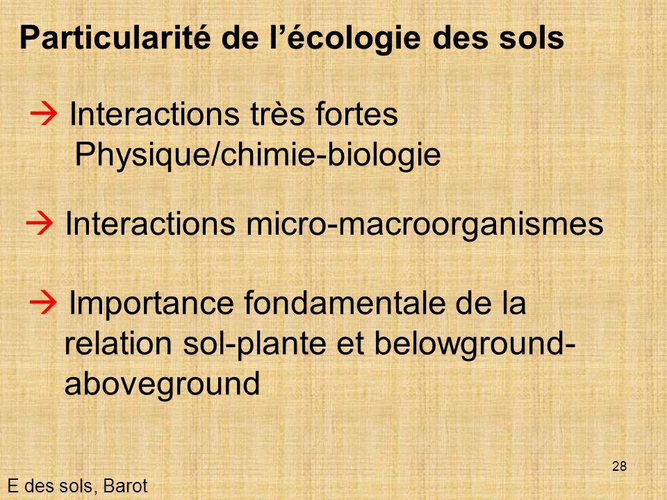 Particularité de l'écologie des sols