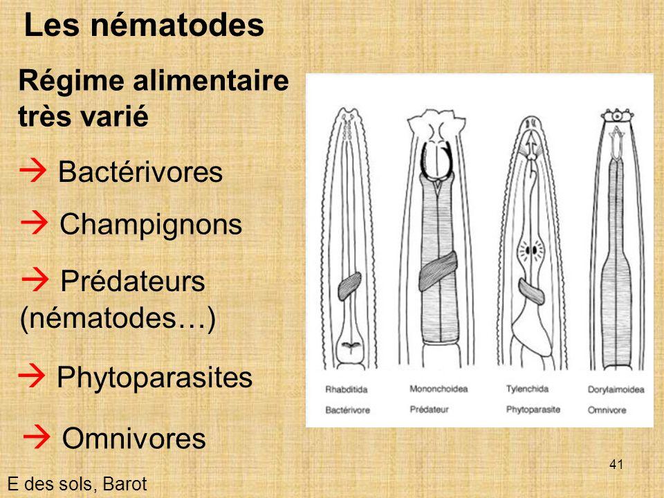  Prédateurs (nématodes…)