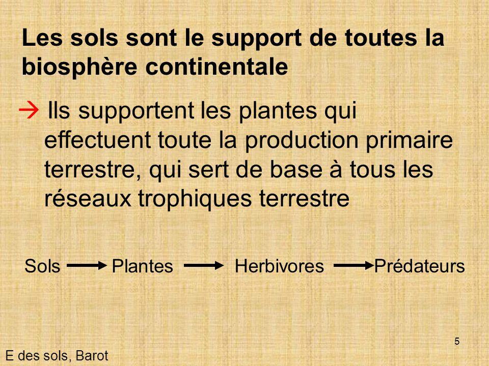 Les sols sont le support de toutes la biosphère continentale