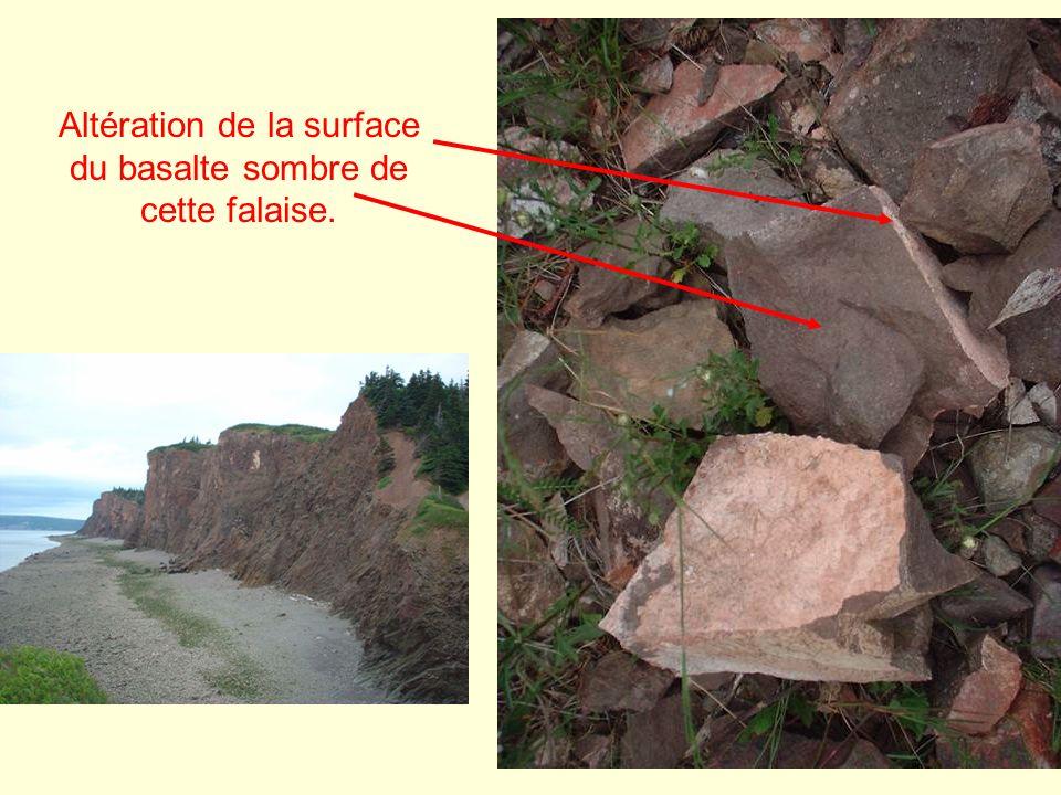 Altération de la surface du basalte sombre de cette falaise.