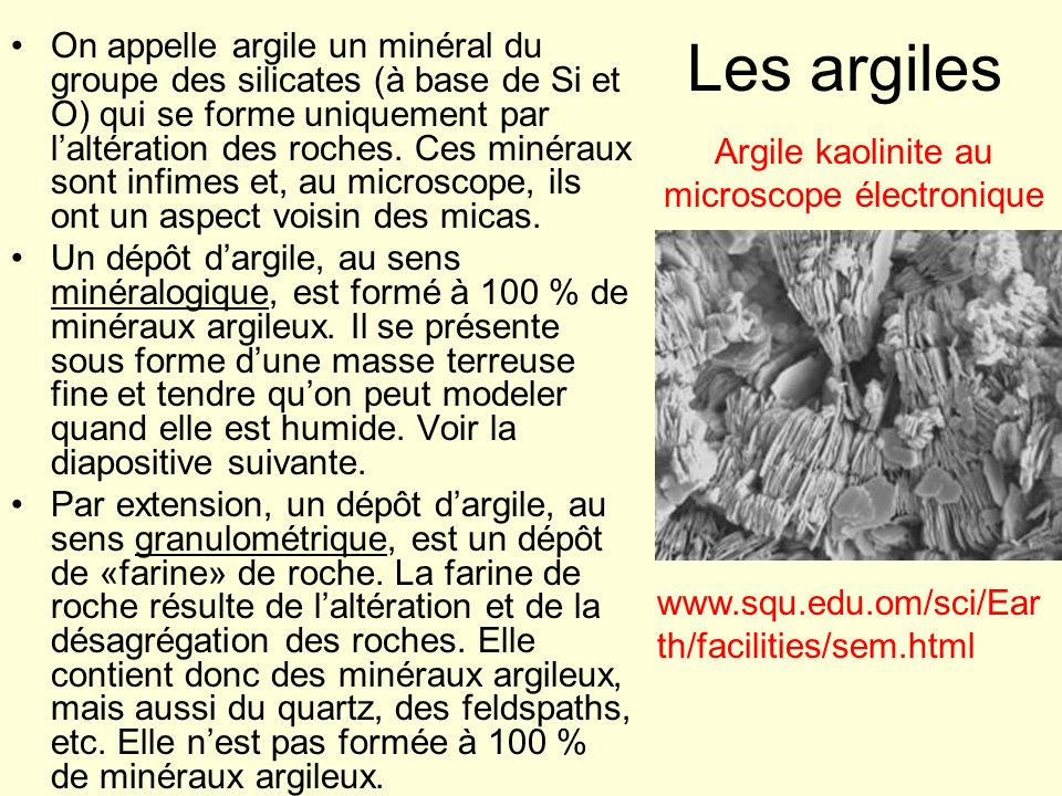 Argile kaolinite au microscope électronique