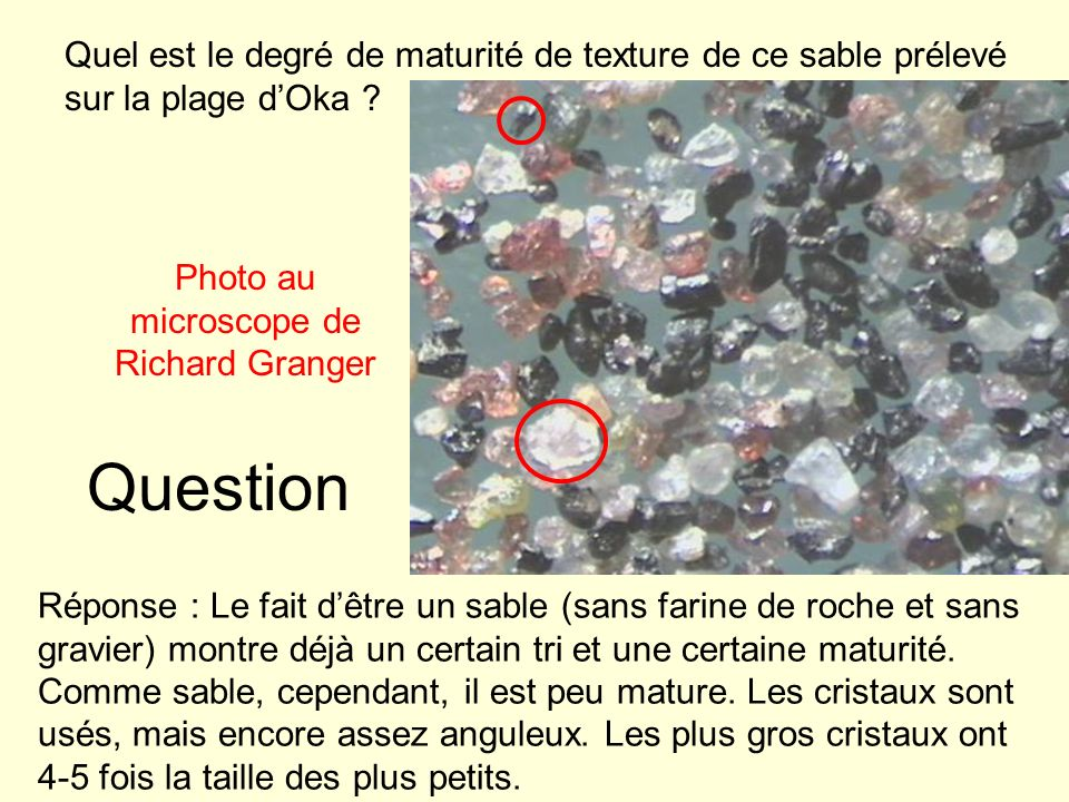 Photo au microscope de Richard Granger