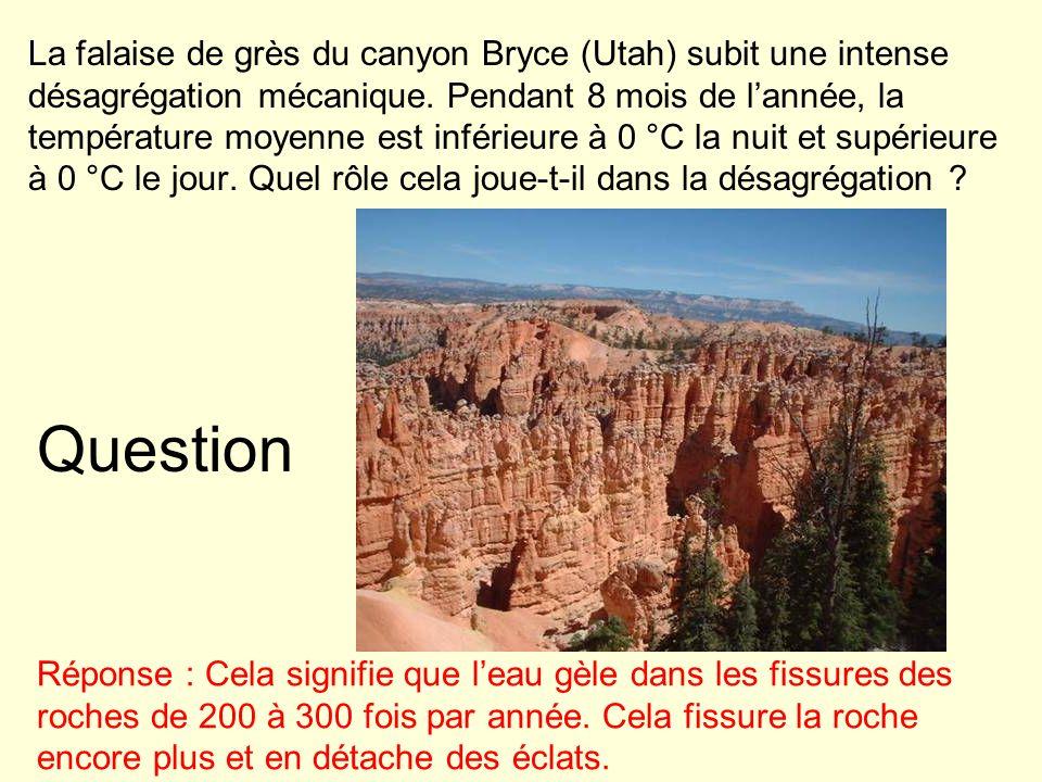 La falaise de grès du canyon Bryce (Utah) subit une intense désagrégation mécanique. Pendant 8 mois de l'année, la température moyenne est inférieure à 0 °C la nuit et supérieure à 0 °C le jour. Quel rôle cela joue-t-il dans la désagrégation