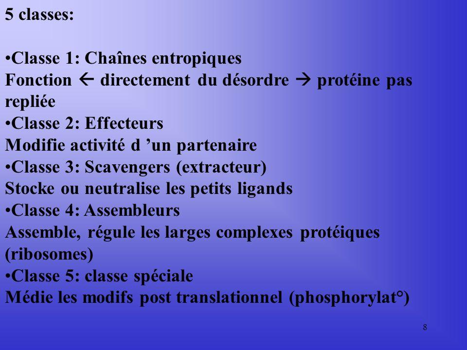 5 classes: Classe 1: Chaînes entropiques. Fonction  directement du désordre  protéine pas repliée.