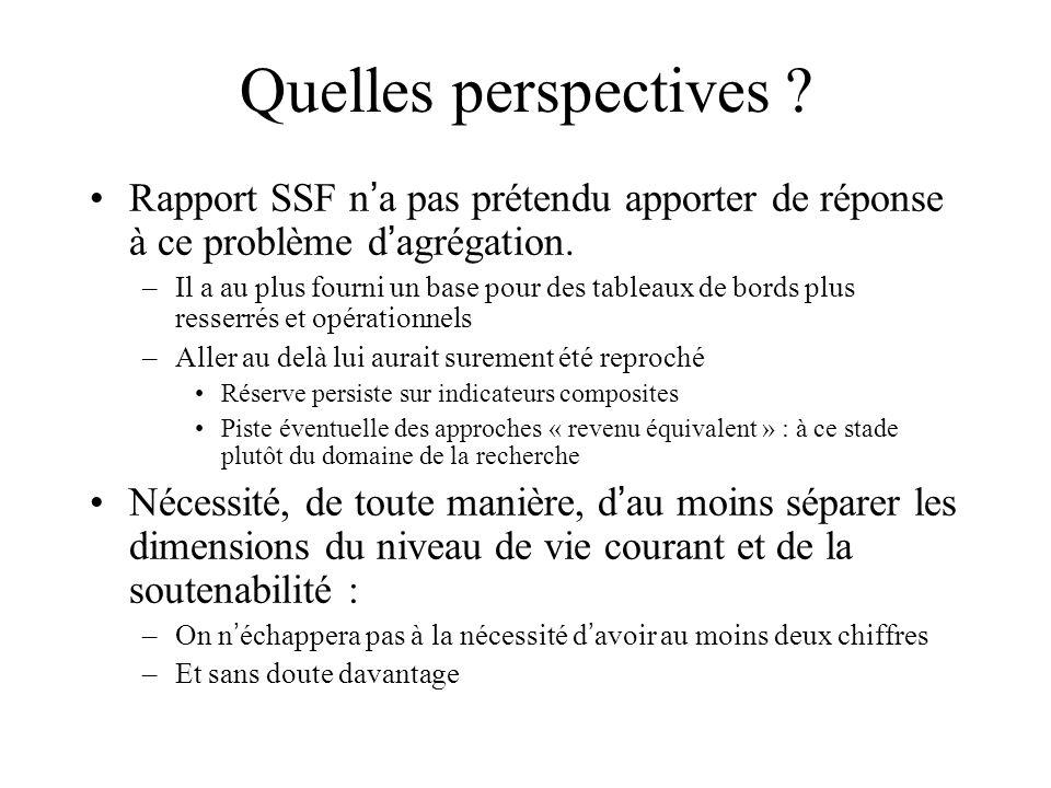 Quelles perspectives Rapport SSF n'a pas prétendu apporter de réponse à ce problème d'agrégation.