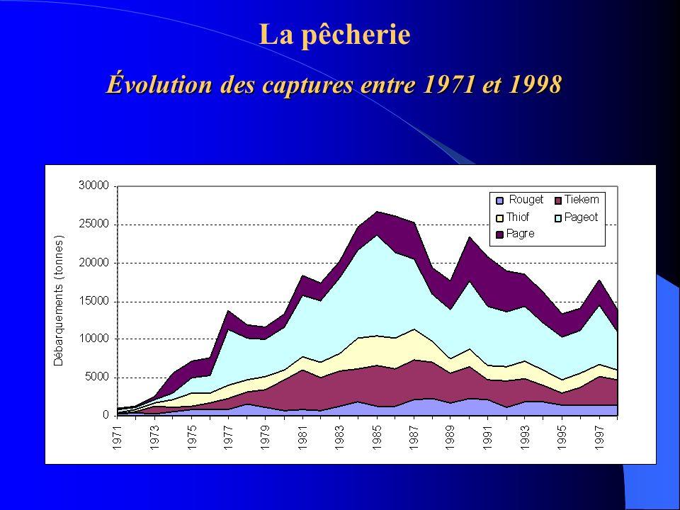 La pêcherie Évolution des captures entre 1971 et 1998