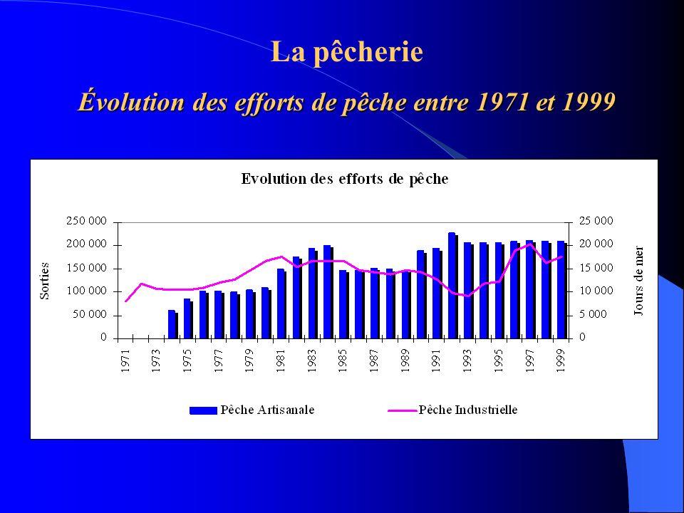 La pêcherie Évolution des efforts de pêche entre 1971 et 1999