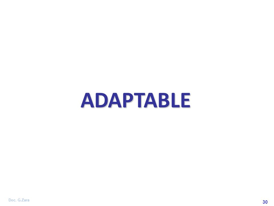 ADAPTABLE 30