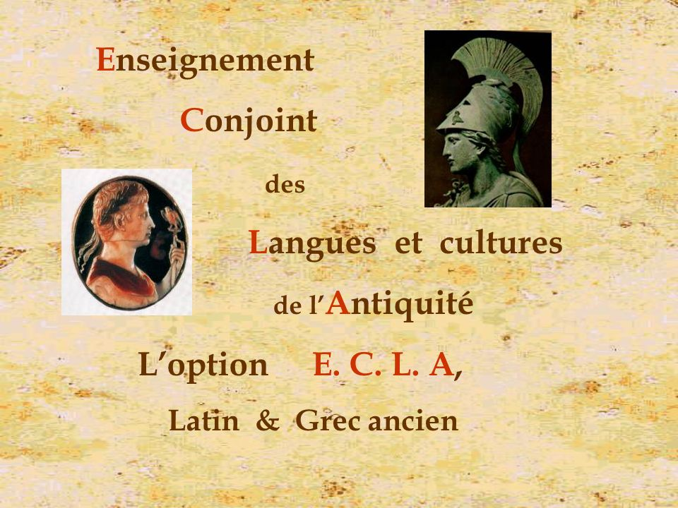 Enseignement Conjoint Langues et cultures L'option E. C. L. A,