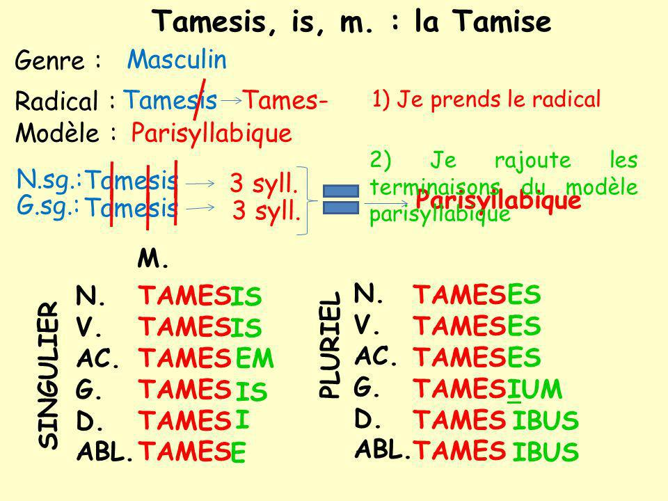 Tamesis, is, m. : la Tamise Genre : Masculin Radical : Tamesis Tames-