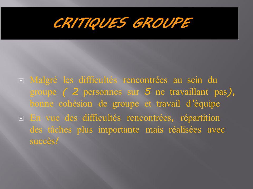 Malgré les difficultés rencontrées au sein du groupe ( 2 personnes sur 5 ne travaillant pas), bonne cohésion de groupe et travail d'équipe