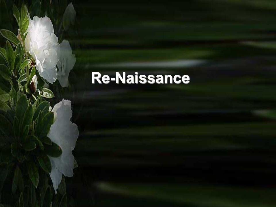Re-Naissance