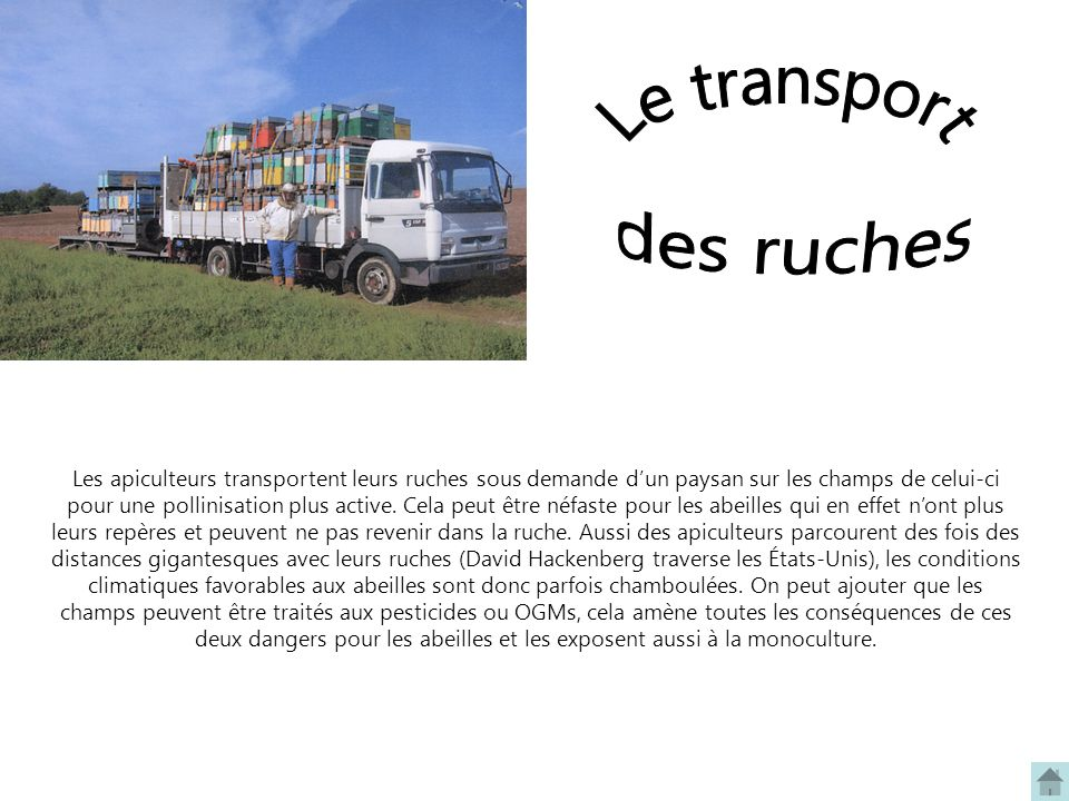 Le transport des ruches