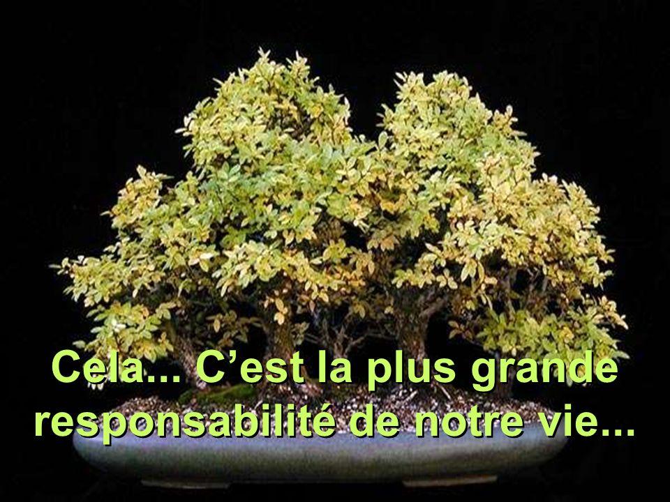 Cela... C'est la plus grande responsabilité de notre vie...
