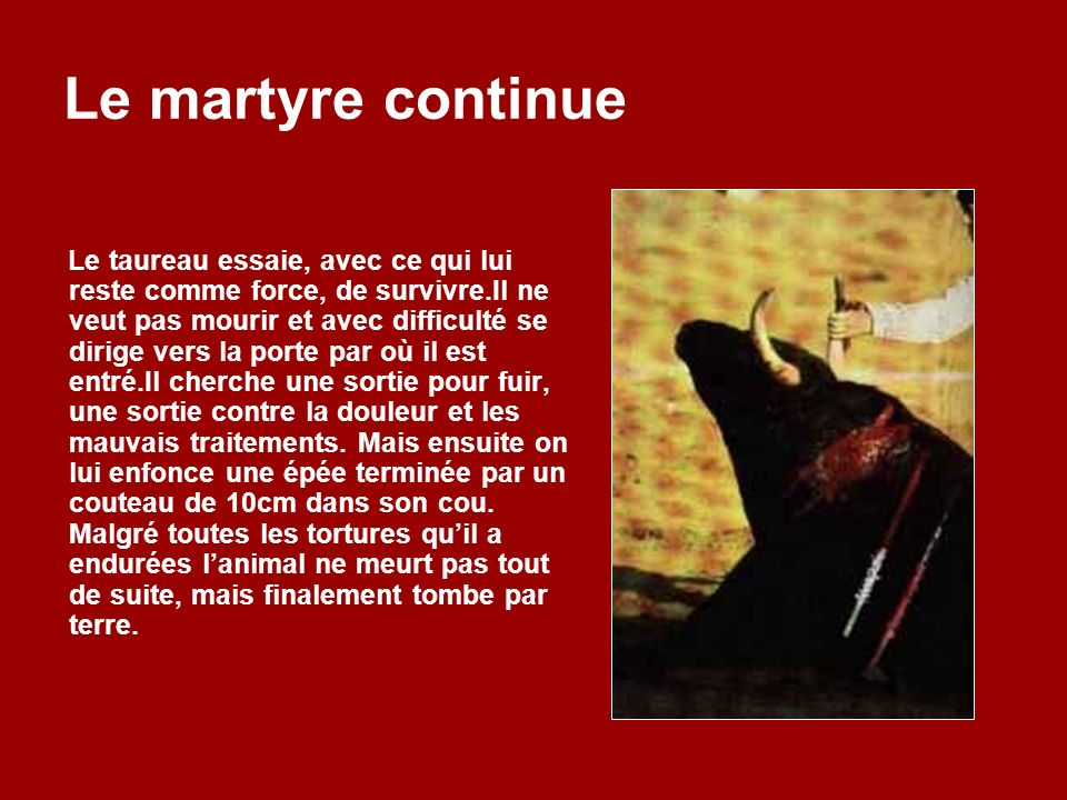 Le martyre continue