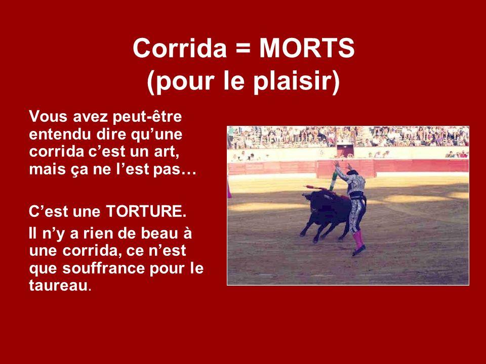 Corrida = MORTS (pour le plaisir)