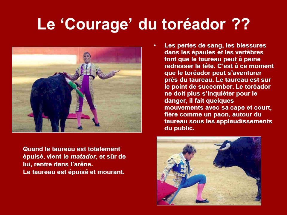 Le 'Courage' du toréador